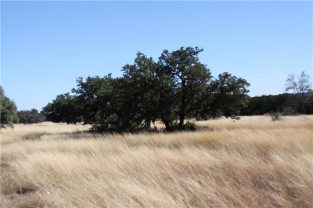 Austin Farms & Ranches For Sale: Acreages In Austin, TX