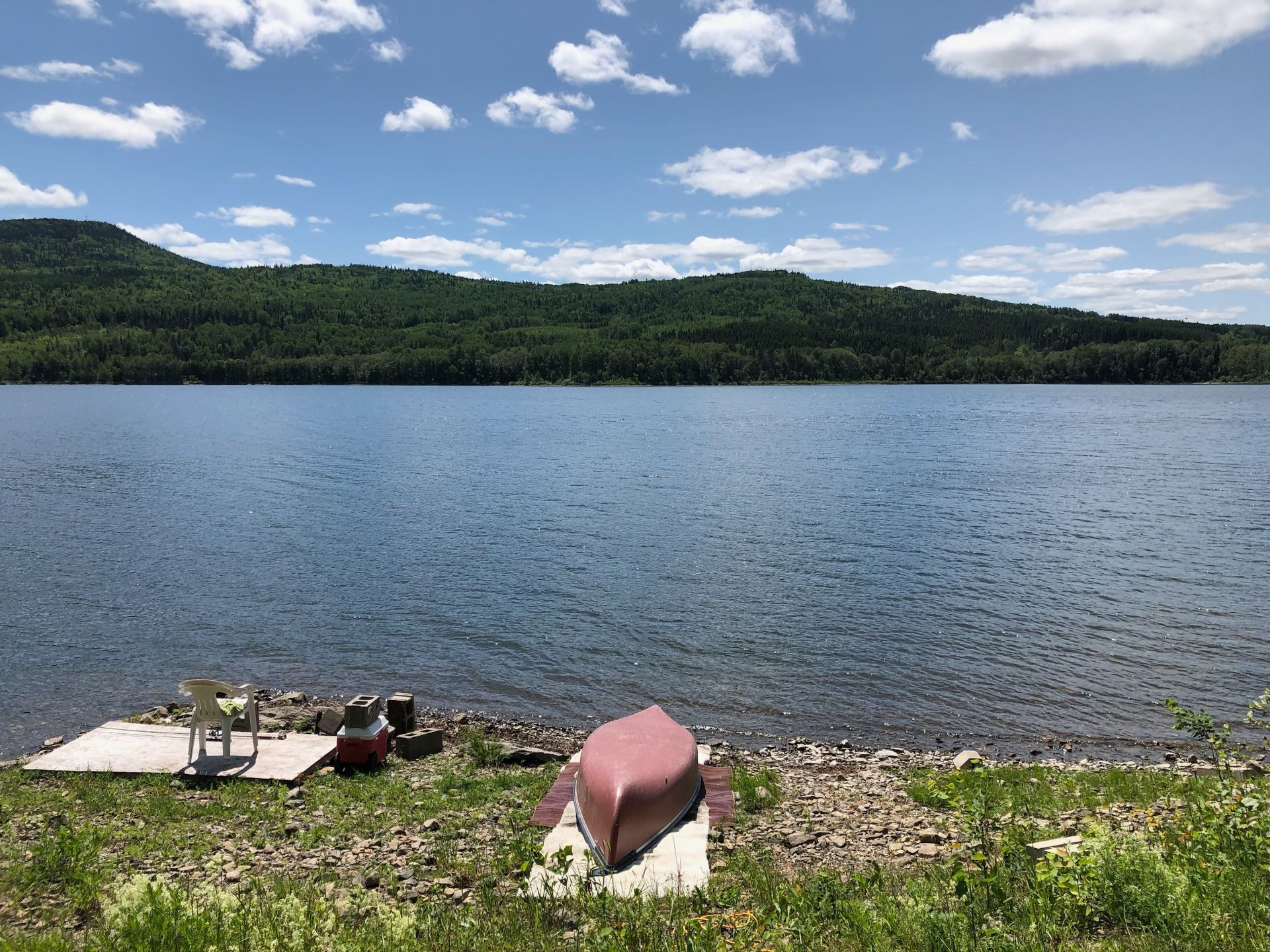 Photo of Listing #12789645