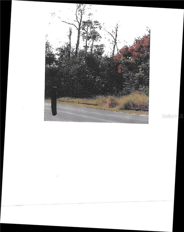 Photo of Listing #O5892401