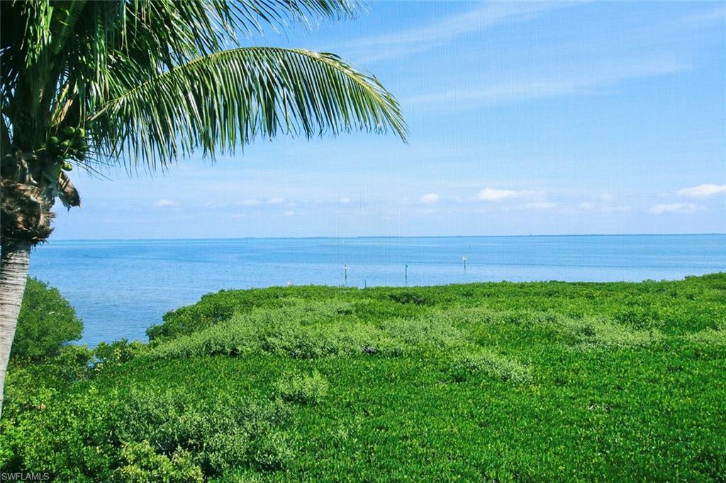CAPTIVA Home for Sale - View SW FL MLS #219011021 in SOUTH SEAS ISLAND RESORT